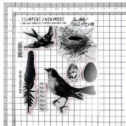 Bird Feather by Tim Holtz