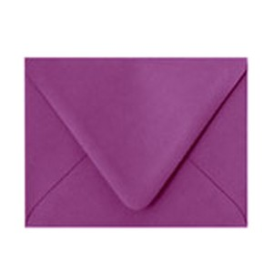 Paper Source Beet Envelope - 10 count