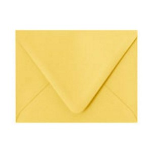 Paper Source Curry A2 Envelope - 10 count class=