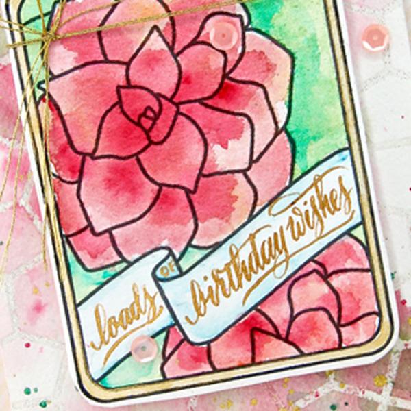 birthdaywishes-close-up7