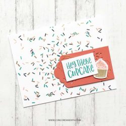 Concord & 9th Sprinkles Turnabout Stamp Set