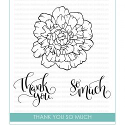 Studio Katia Thank You So Much Stamp Set