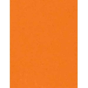 Circus Peanuts Heavy Cardstock - 10 sheets