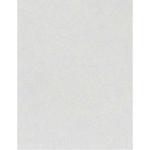 Shimmer Silver Cardstock – 10 sheets class=