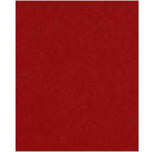 Peppermint Heavy Cardstock - 10 sheets