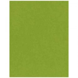 Easter Grass Heavy Cardstock - 10 sheets