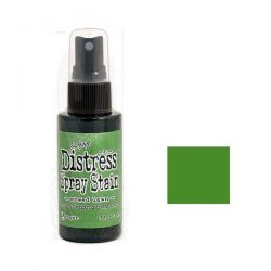 Tim Holtz Distress Spray Stain – Mowed Lawn