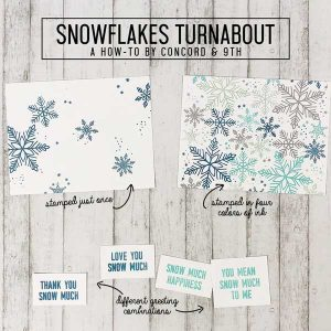 Concord & 9th Snowflakes Turnabout Stamp class=