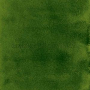 Alexandra Renke Design Paper – Dark Green Watercolor