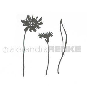 Alexandra Renke Cornflowers Dies