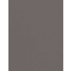 Slate Cardstock - 10 Sheets class=