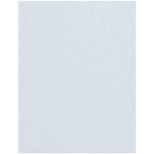 Hydrangea Cardstock - 10 Sheets