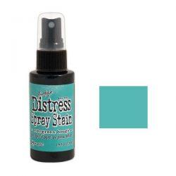 Tim Holtz Distress Spray Stain – Evergreen Bough