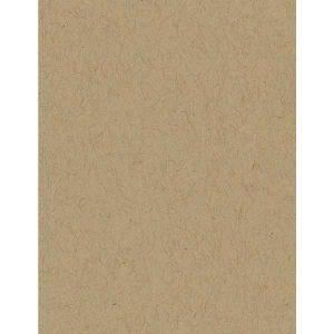 Bazzill Kraft Classic Cardstock - 10 sheets