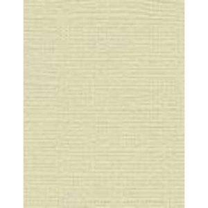 My Colors Canvas Cardstock 8.5″X11″ – Muslin