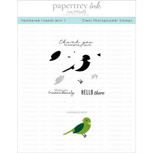 Papertrey Ink Feathered Friends Mini 1 Stamp Set