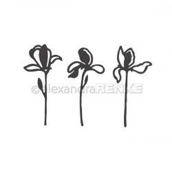 Alexandra Renke Set of Flowers Dies