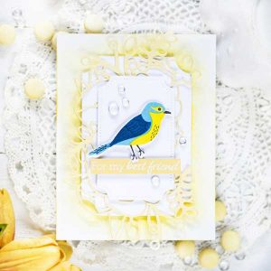 Papertrey Ink Feathered Friends Mini 2 Stamp Set class=
