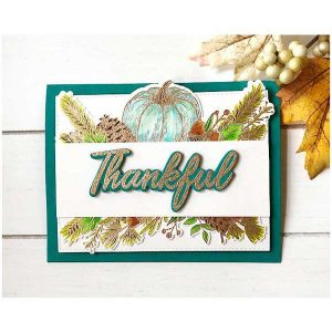 Papertrey Ink Framing Fall Sentiments Stamp Set class=