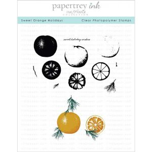 Papertrey Ink Sweet Orange Holidays Stamp Set
