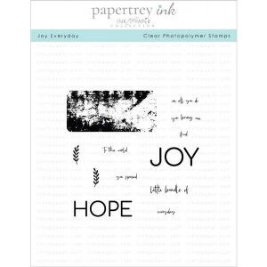 Papertrey Ink Joy Everyday Stamp Set