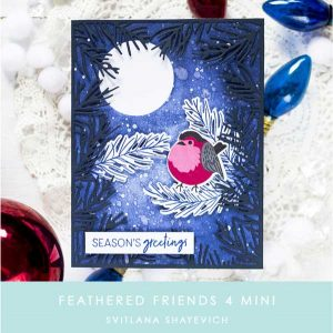 Papertrey Ink Feathered Friends Mini 4 Stamp Set class=