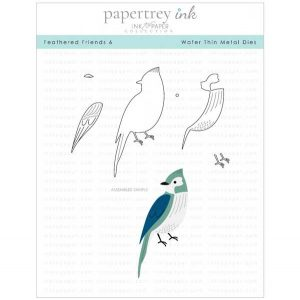 Papertrey Ink Feathered Friends 6 Die