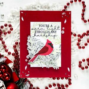 Papertrey Ink Feathered Friends Mini 6 Die class=