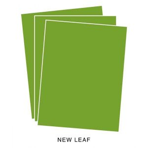 Papertrey Ink New Leaf Cardstock