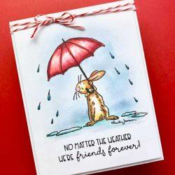 Colorado Craft Company Anita Jerem-All Weather Friend Stamp Set