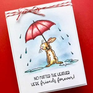Colorado Craft Company Anita Jerem-All Weather Friend Stamp Set class=