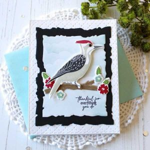 Papertrey Ink Feathered Friends Mini 9 Stamp class=
