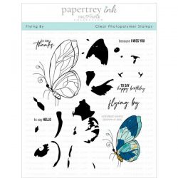 Papertrey Ink Flying By Stamp