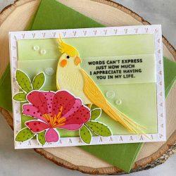 Papertrey Ink Feathered Friends 9 Die
