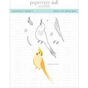 Papertrey Ink Feathered Friends 9 Die