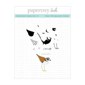 Papertrey Ink Feathered Friends Mini 12 Stamp