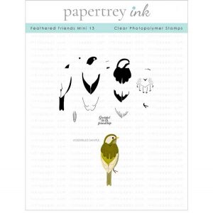 Papertrey Ink Feathered Friends Mini 13 Stamp