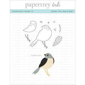 Papertrey Ink Feathered Friends 13 Die